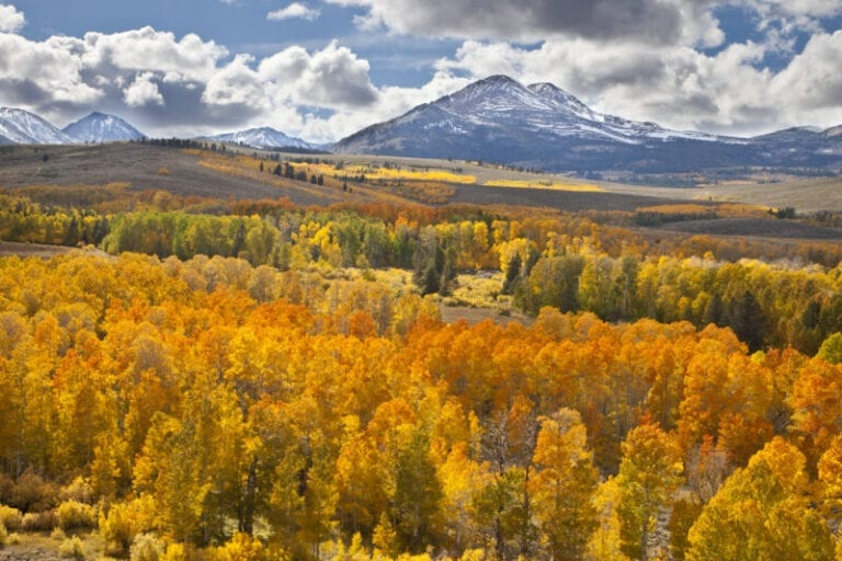 Capture the Fall Colors With Tips from This Pro Photographer